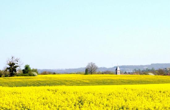 Précy sur Marne